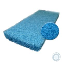 Blue nylon scrub pads medium 10 x 4½ x 1in (20 pcs)