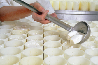 Ladling curd and whey